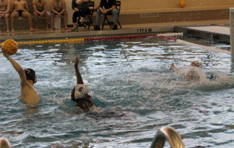 Boys water polo washes out Hoffman Estates