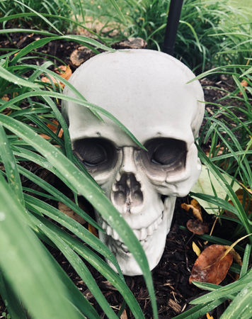 Skulls are just one of the many creepy symbols of the Halloween season.