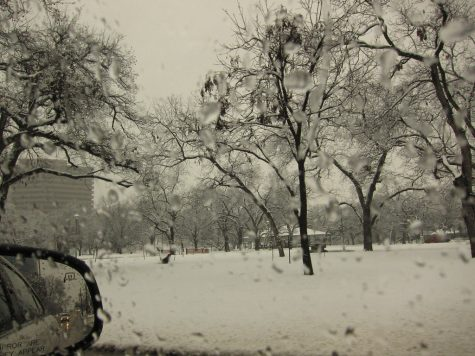 Record Dallas Texas Snow
